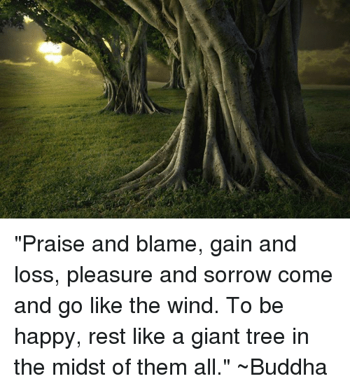 praise-and-blame-gain-and-loss-pleasure-and-sorrow-come-13782493